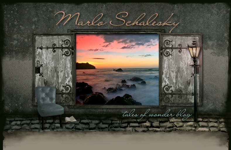 Welcome to the blog of author Marlo Schalesky!
