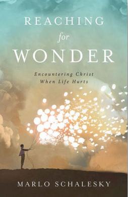 Reaching for Wonder - Marlo Schalesky